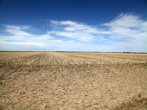 H3 Enterprises, Llc Land Auction : Lamar : Prowers County : Colorado