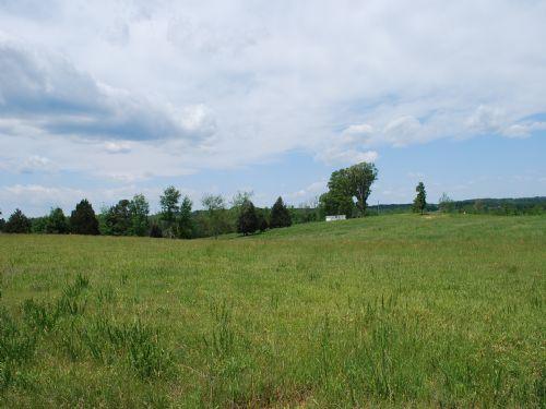 146 Acres Of Hardwoods And Pasture : Union : Union County : South Carolina