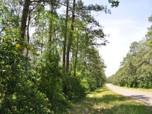 167 Ac Scales Ranch Road : Huntsville : Walker County : Texas