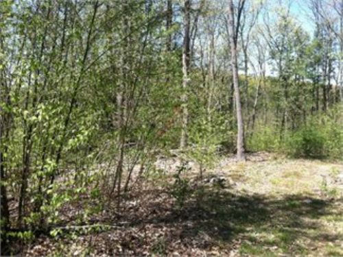 23 +/- Acres Small Cabin And Shed : Bloomsburg : Columbia County : Pennsylvania