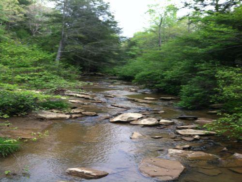 Acreage Adjoining Park : Soddy Daisy : Hamilton County : Tennessee