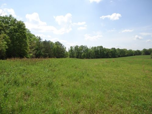 46 +/- Acres, Coffee County : Zion Chapel : Coffee County : Alabama