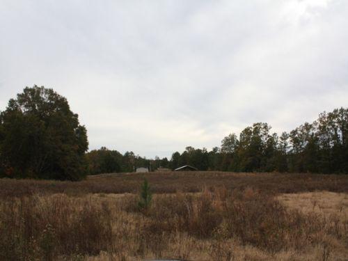 35 +/- Acres : Coffee County : Alabama