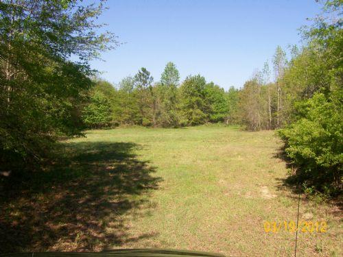 22 +/- Acres In Goshen, Al : Goshen : Pike County : Alabama