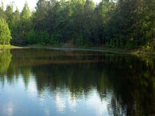11.84 Acres With House And Pond : Carlton : Oglethorpe County : Georgia