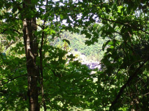 10+/- Acres, Views, Near River : Mountain View : Stone County : Arkansas