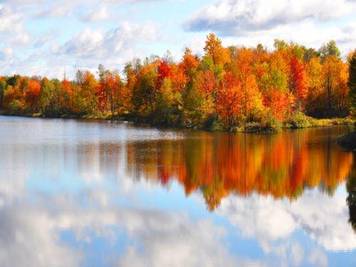 10 Acre 2300 Feet On River & Lake : Antwerp : Jefferson County : New York
