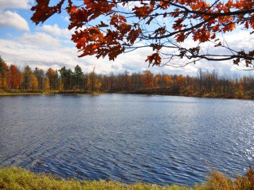 5 Acres On Lake Morris $29,900 : Antwerp : Jefferson County : New York