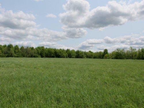 57 Acres Farmland Woods : Moira : Franklin County : New York