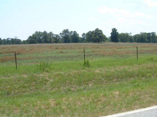 Hadden 60 Tract : Gibson : Glascock County : Georgia
