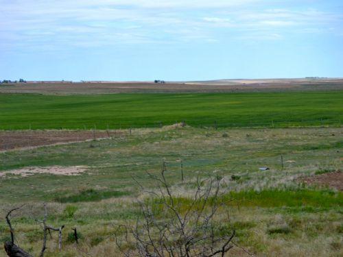 Kirk Consignment Land Auction : Kirk : Yuma County : Colorado
