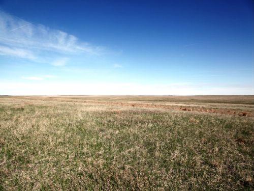 Crp Consignment Land Auction : Last Chance : Washington County : Colorado