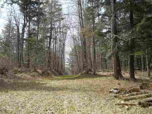 Tbd Off Black Creek Rd Mls1066477 : Arvon T : Baraga County : Michigan