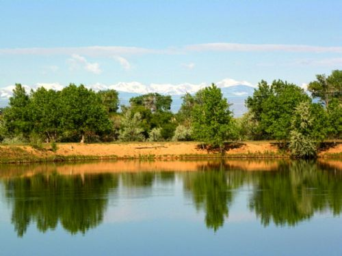 Dd Ranch Land & Water Right Auction : Fort Lupton : Weld County : Colorado