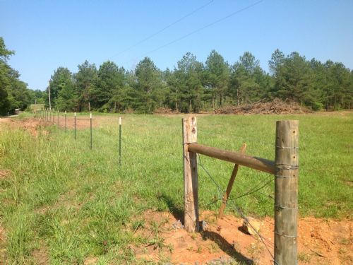 36+/- Acres Marble Valley : Fayetteville : Coosa County : Alabama