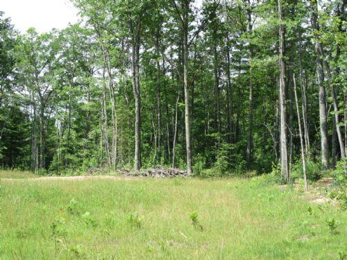 20+/-ac On Monks Lake : Lac Du Flambeau : Vilas County : Wisconsin