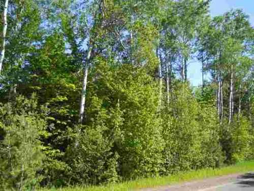Tbd Freda Rd  Mls #1069727 : Stanton Twp : Houghton County : Michigan