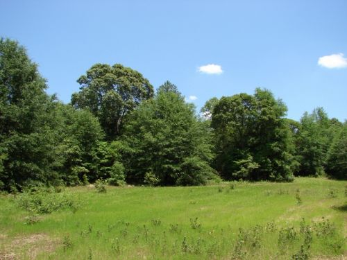 270 Acres : Prattville : Autauga County : Alabama