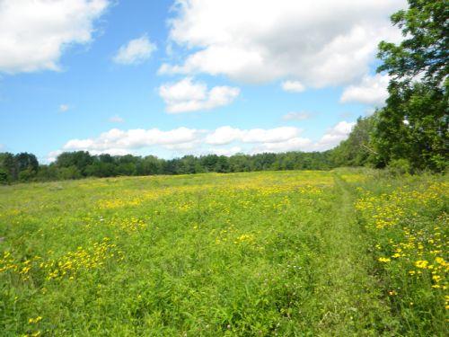 25 Acres Farmland Finger Lakes Ny : Ulysses : Tompkins County : New York