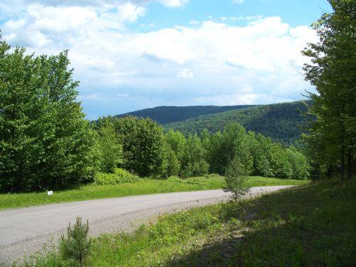 5 Acres Mountain Ski Lodge : Virgil : Cortland County : New York