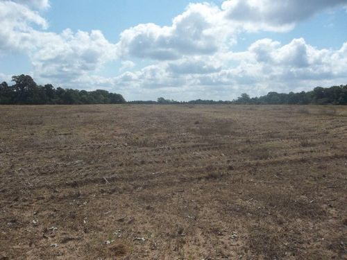 386 +/- Acres In Elba, Al : Elba : Coffee County : Alabama