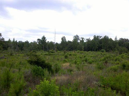 22127sa040 Mack : Winnfield : Winn Parish : Louisiana