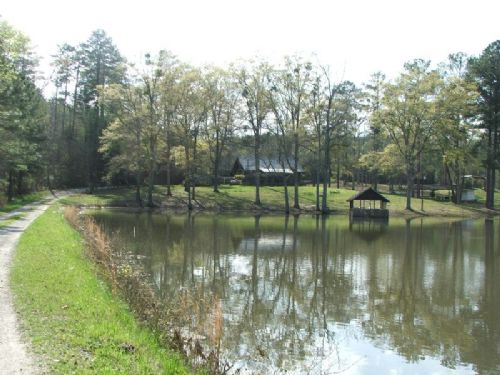 46 Acres +/- Getaway With Cabin : Lawley : Bibb County : Alabama