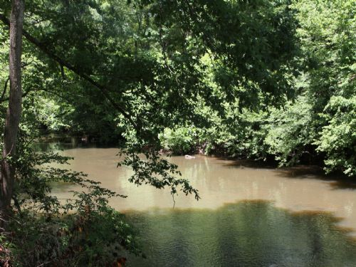 Hatchett Creek Frontage - 190 Acres : Sylacauga : Coosa County : Alabama