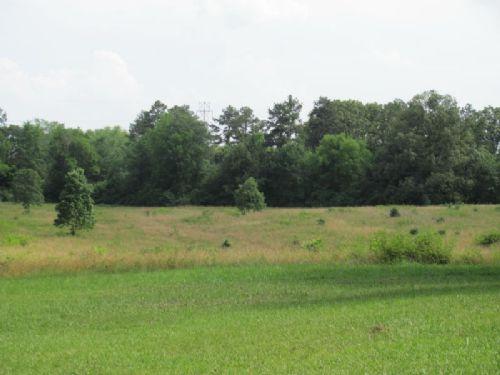 19.56 Acre Homesite Or Small Farm : Gaffney : Cherokee County : South Carolina