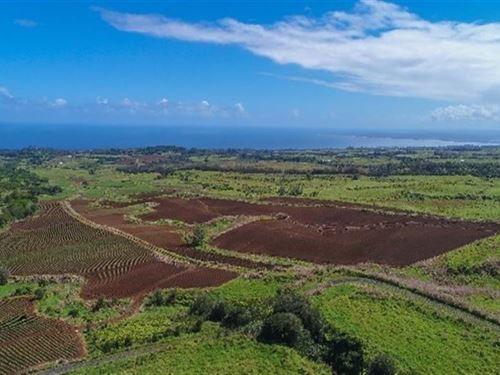 213 Acres Ocean Views : Paukaa : Hawaii County : Hawaii