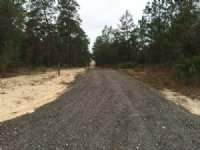 Rare Find  20 Acres Great Location in Hernando County, Florida
