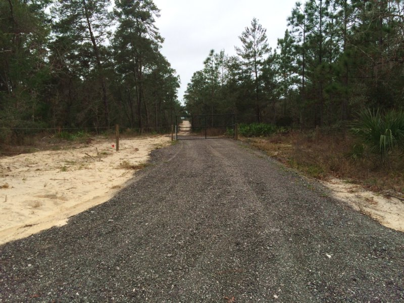 Rare Find  20 Acres Great Location : Weeki Wachee : Hernando County : Florida