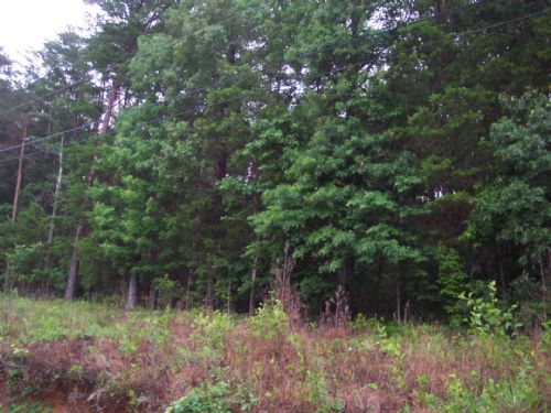 8.53 Acres Rydal : Rydal : Bartow County : Georgia