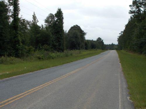 30 Acre Homesite/recreational Tract : Jesup : Wayne County : Georgia