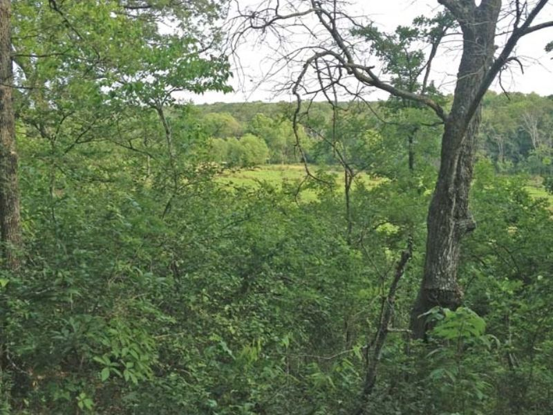 Deep Fork Game Lands Tract 5 : Mason : Okfuskee County : Oklahoma