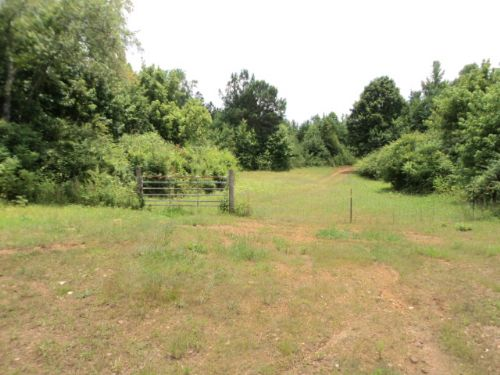 49+/- Acres Hollis Crossroads Area : Heflin : Cleburne County : Alabama