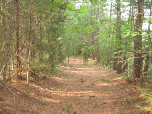 Jernigan - Massey - Parcel 2 : Burlington : Alamance County : North Carolina