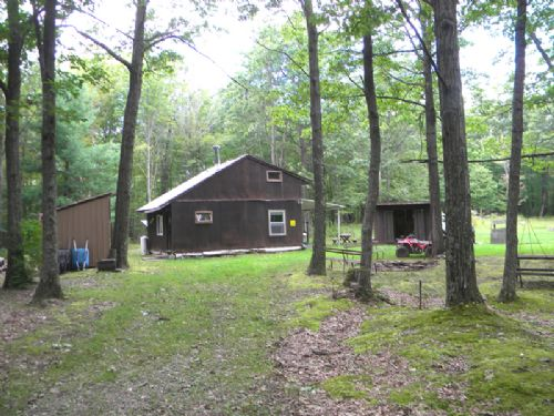 229 Acres Cabin Hunting Land : Hartsville : Steuben County : New York