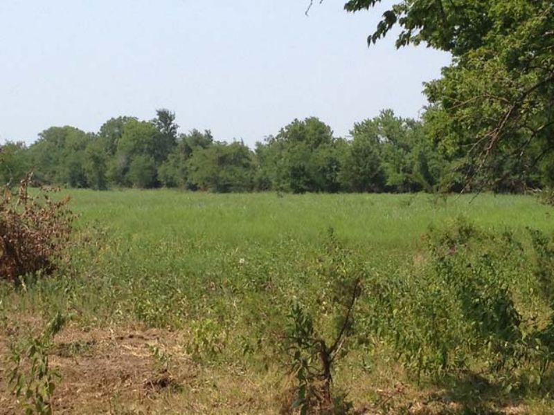 Nelson 10 : Nelson : Choctaw County : Oklahoma