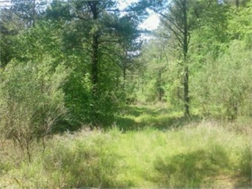 Beautiful 11 Acre Farm : Lancaster : Kershaw County : South Carolina