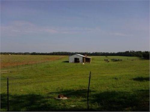 Beautiful Horse Farm, Meadows : Gaston : Lexington County : South Carolina