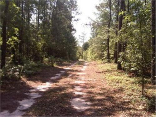 57.39ac Close To Columbia & Sumter : Eastover : Richland County : South Carolina