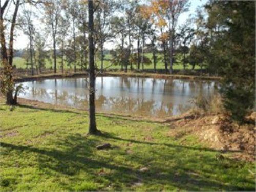 100ac With Pond : Saluda : Saluda County : South Carolina