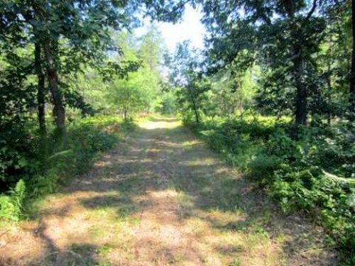 200 Acres Of Outstanding Land : Coloma : Adams County : Wisconsin