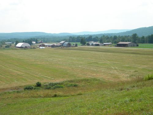 617 Acres Operating Dairy Farm Land : Edmeston : Otsego County : New York