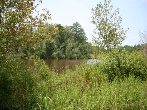 Ellis Recreational Investment : Ellaville : Marion County : Georgia