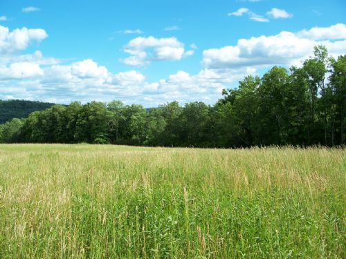 10 Acres Country Acres With Views : Smithville Flats : Chenango County : New York
