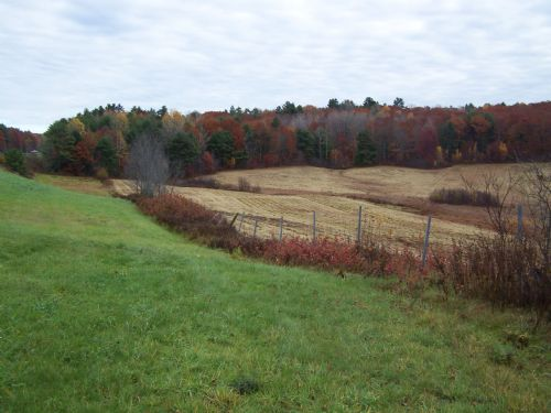 68-acre Farm In Damariscotta : Damariscotta : Lincoln County : Maine