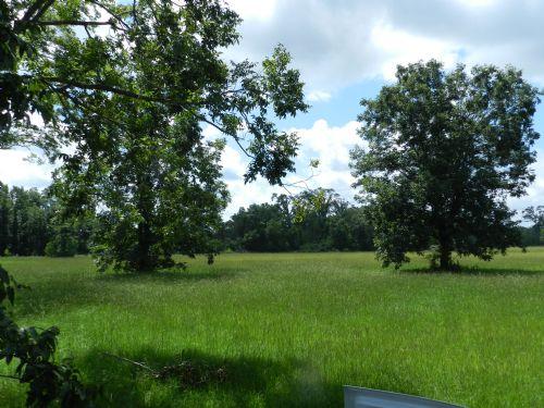 Hessmer 67 : Hessmer : Avoyelles Parish : Louisiana