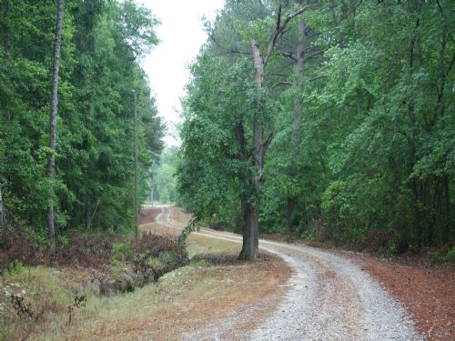 Private Home On 12 Acres : Dearing : McDuffie County : Georgia